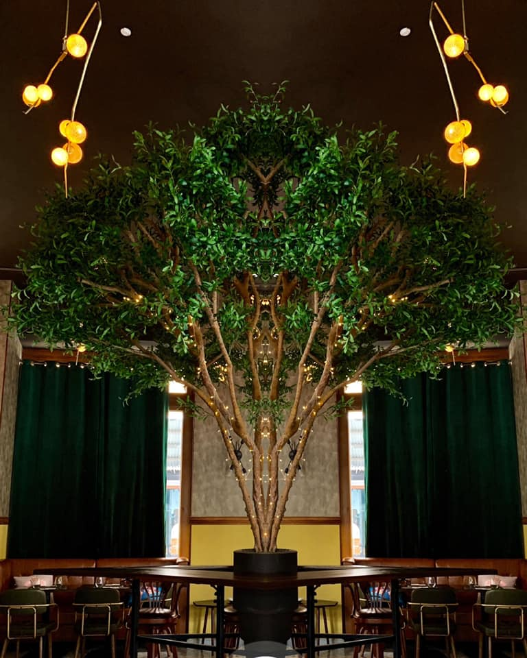 A tree sits at the center of LOLA mía Restaurant