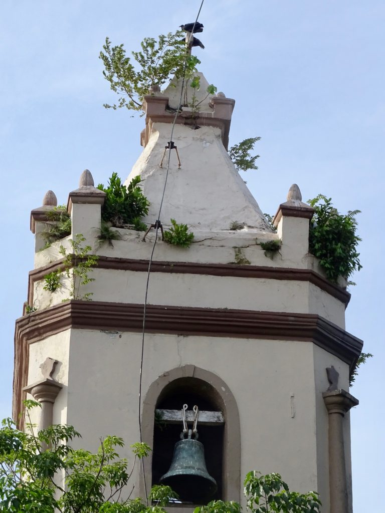 The bell tower of the Church of Santa Ana that has weeds growing