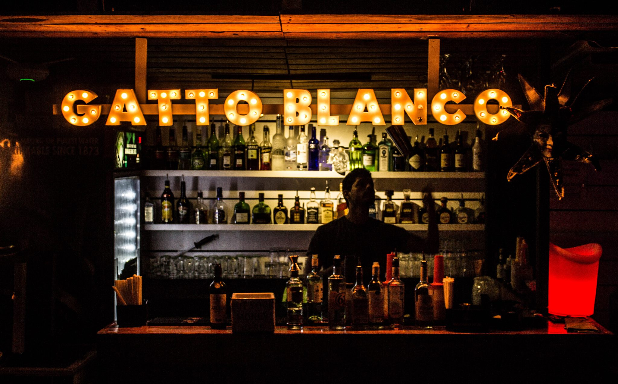 bar with liquors at Gatto Blanco Party Hotel  in Casco Viejo Panama