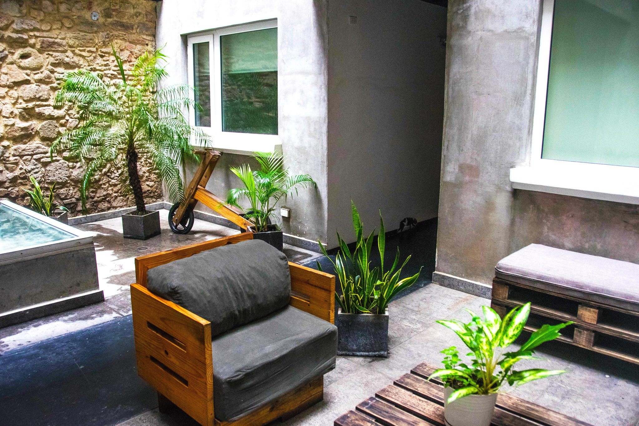 common area with pallet furniture and plants at Gatto Blanco Party Hotel