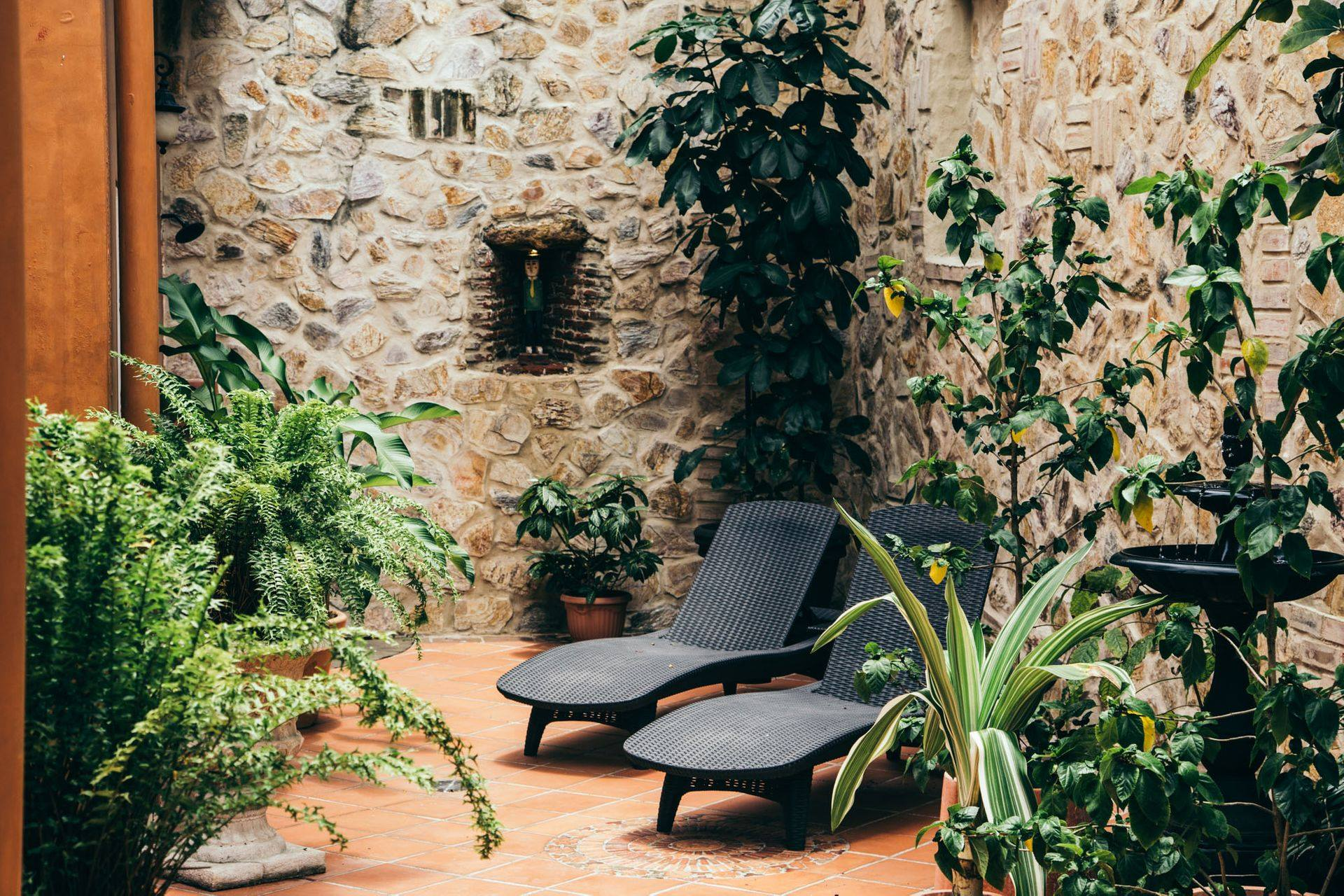 lounge chairs and plants in the courtyard of La Isabela Suites