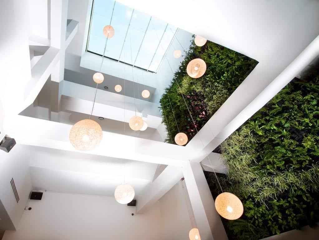 El muro verde en el Hotel Tantalo tiene 983 especies nativas diferentes